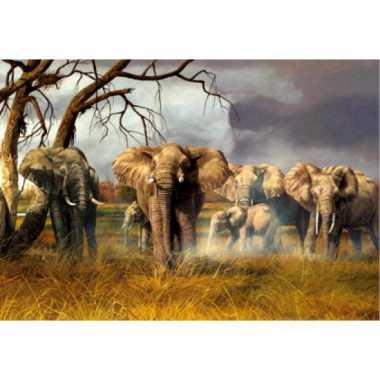 Onderlegger met olifant print