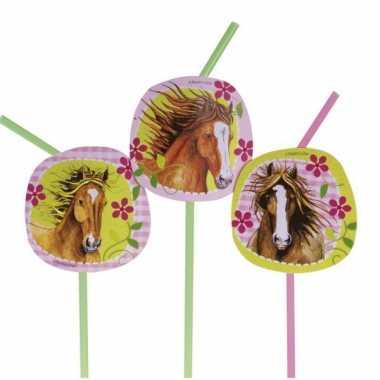 Paard rietjes