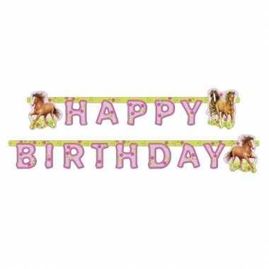 Paard slingers happy birthday