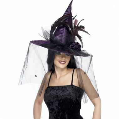 Paarse halloween hoed heks
