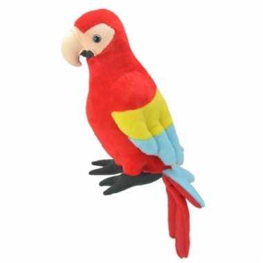 Papegaai knuffeltje 38 cm
