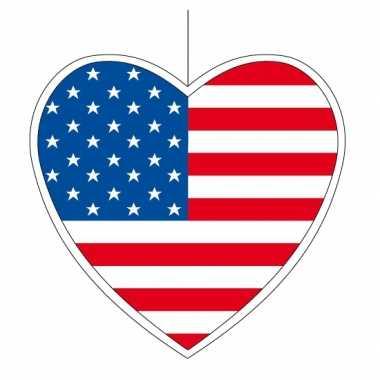 Papieren hart in amerikaanse kleuren 14 cm