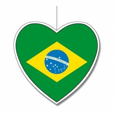 Papieren hart in braziliaanse kleuren 30 cm