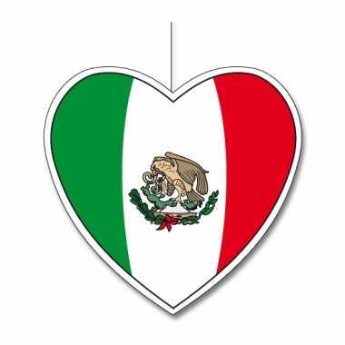 Papieren hart in mexicaanse kleuren 30 cm