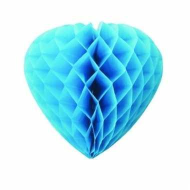 Papieren hart turquiose