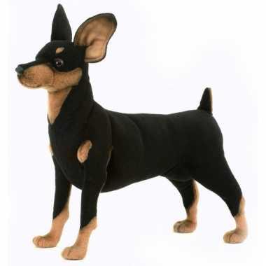 Pincher hondje 43 cm