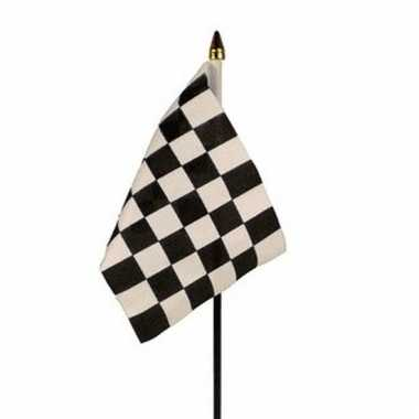 Race finish vlag op stokje
