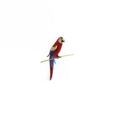 Realistische rode ara knuffel 72 cm