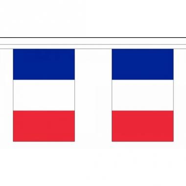Rechthoekige frankrijk vlaggenlijn
