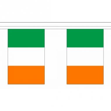 Rechthoekige ierland vlaggenlijn