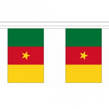 Rechthoekige vlaggenlijn kameroen