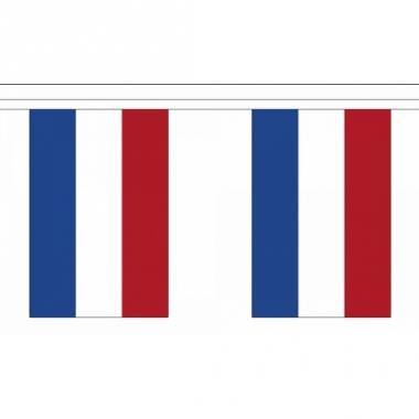 Rechthoekige vlaggenlijn nederland