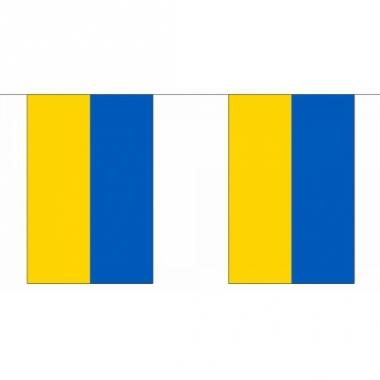 Rechthoekige vlaggenlijn oekraine