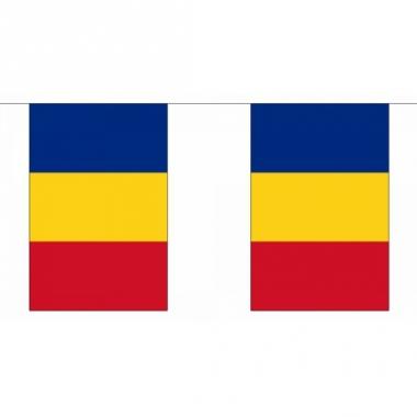Rechthoekige vlaggenlijn roemenie