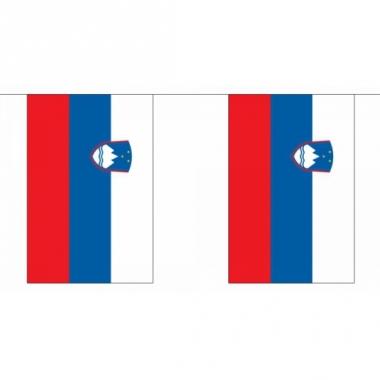 Rechthoekige vlaggenlijn slovenie