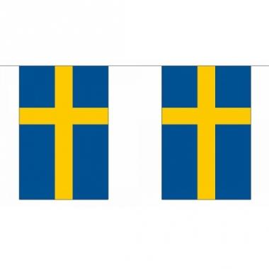 Rechthoekige vlaggenlijn zweden