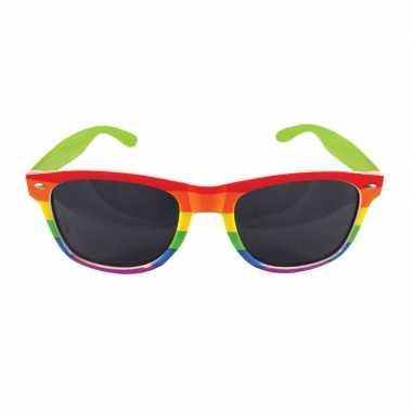Regenboog feest bril voor volwassenen