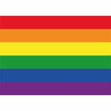 Regenboog vlag / lgbt vlag sticker 7.5 x 10 cm
