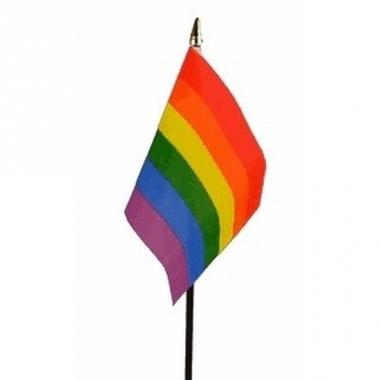 Regenboog vlag op stokje