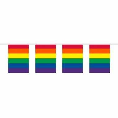 Regenboog vlaggenlijn vierkant 10 meter