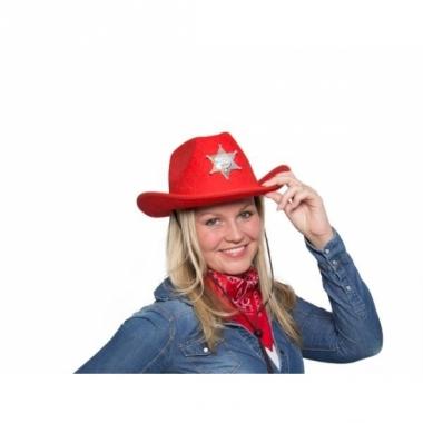 Rode cowgirlhoed / cowboyhoed met lichtje