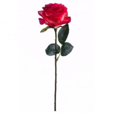 Rode/gele roos op steel 45 cm