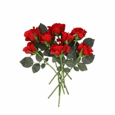 Rode roos op steel 30 cm 8 stuks