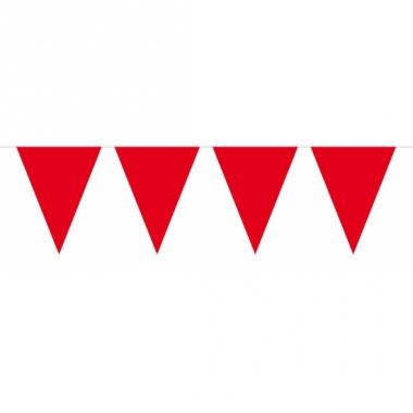 Rode slinger met vlaggetjes 10 meter