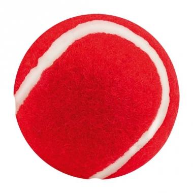 Rood hondenballetje