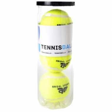 Tennisballen in koker 3 stuks