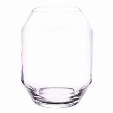 Vaas helder glas 25 cm