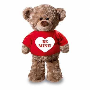 Valentijn - knuffel teddybeer be mine hartje rood shirt 24 cm