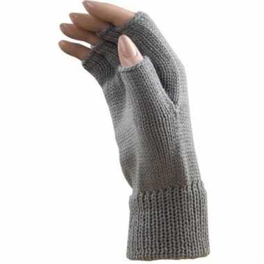 Verkleed licht grijze handschoenen vingerloos voor volwassenen