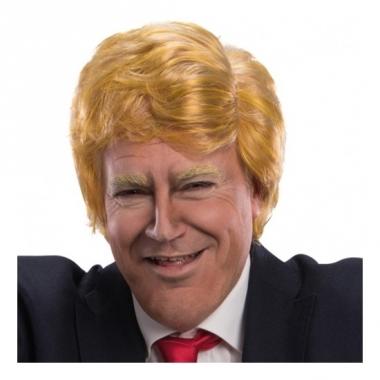Verkleed pruik amerikaanse president