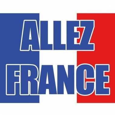 Vlag frankrijk 70 x 100 cm