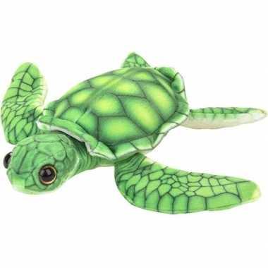 Zeedieren knuffels schildpad groen 18 cm