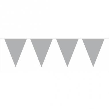 Zilveren slinger met vlaggetjes 6 meter