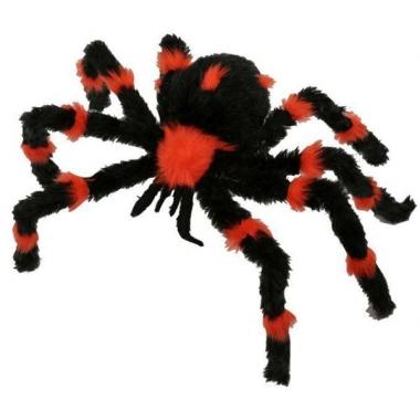 Zwart met oranje nepspin 60 cm