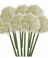 10x witte allium sierui kunstbloemen 65 cm