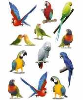 12x papegaaien vogels dieren stickers 3d effect