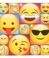 13x emoji smiley memo magneten type 2