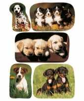 15x honden puppy dieren stickers
