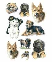 27x honden puppy dieren stickers
