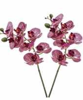 2x fuchsia roze phaleanopsis vlinderorchidee kunstbloemen 70 cm