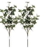 2x groen geelbonte hedera klimop kunsttakken kunstplanten 50 cm