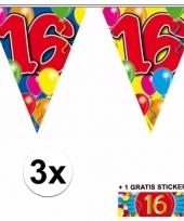 3 vlaggenlijnen 16 jaar met gratis sticker