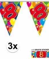 3 vlaggenlijnen 8 jaar met gratis sticker