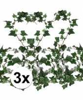 3x klimop slinger hedera helix 180 cm