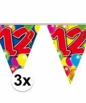 3x vlaggenlijnen 12 jaar 10 meter