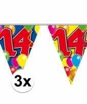 3x vlaggenlijnen 14 jaar 10 meter